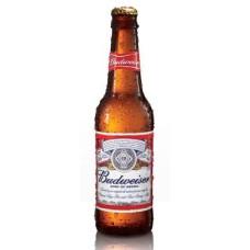 Budweiser USA Bier Fles Doos 24x33cl